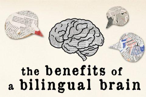 バイリンガル脳のためのポリリズム講座